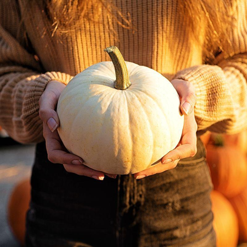 """<p>Oh my gourd—it's finally autumn. And if the fall season has one undisputed icon, it's the pumpkin. You begin <a href=""""https://www.countryliving.com/life/travel/g21273436/pumpkin-farms-near-me/"""" rel=""""nofollow noopener"""" target=""""_blank"""" data-ylk=""""slk:pumpkin picking in September"""" class=""""link rapid-noclick-resp"""">pumpkin picking in September</a>, <a href=""""https://www.countryliving.com/diy-crafts/g279/pumpkin-carving-ideas/"""" rel=""""nofollow noopener"""" target=""""_blank"""" data-ylk=""""slk:you start carving your best designs in October"""" class=""""link rapid-noclick-resp"""">you start carving your best designs in October</a>, and <a href=""""https://www.countryliving.com/diy-crafts/g1350/pumpkin-decorating-1009/"""" rel=""""nofollow noopener"""" target=""""_blank"""" data-ylk=""""slk:you decorate with 'em throughout November"""" class=""""link rapid-noclick-resp"""">you decorate with 'em throughout November</a>. Perfect for Halloween and Thanksgiving, the pumpkin deserves a lot of credit for making this time of year so festive. That's why we're thinking you'll enjoy these <strong>c</strong><strong>lever quotes and puns about pumpkins</strong> all season long. </p><p>Whether you're looking for an<a href=""""https://www.countryliving.com/life/a23326556/fall-instagram-captions/"""" rel=""""nofollow noopener"""" target=""""_blank"""" data-ylk=""""slk:Instagram caption"""" class=""""link rapid-noclick-resp""""> Instagram caption</a> for your latest photo of your PSL or you're just in need for some holiday-themed <a href=""""https://www.countryliving.com/life/a27452412/best-dad-jokes/"""" rel=""""nofollow noopener"""" target=""""_blank"""" data-ylk=""""slk:Dad jokes"""" class=""""link rapid-noclick-resp"""">Dad jokes</a> for the trick or treaters, you can't go wrong with this list of fun sayings. You can even carve one of these clever ideas into your pumpkin if you'd like. We think you'll especially enjoy the ones from your favorite movies, but we also have short and sweet one-liners that will fit on any little gourd you have. </p><p>Now all that's left to do is whip up your favori"""