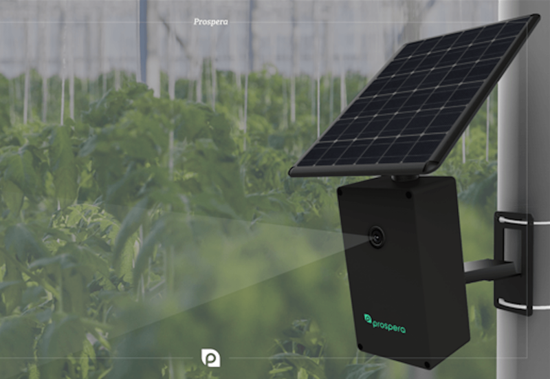 Prospera wants to use AI to bring agriculture into the 21st century