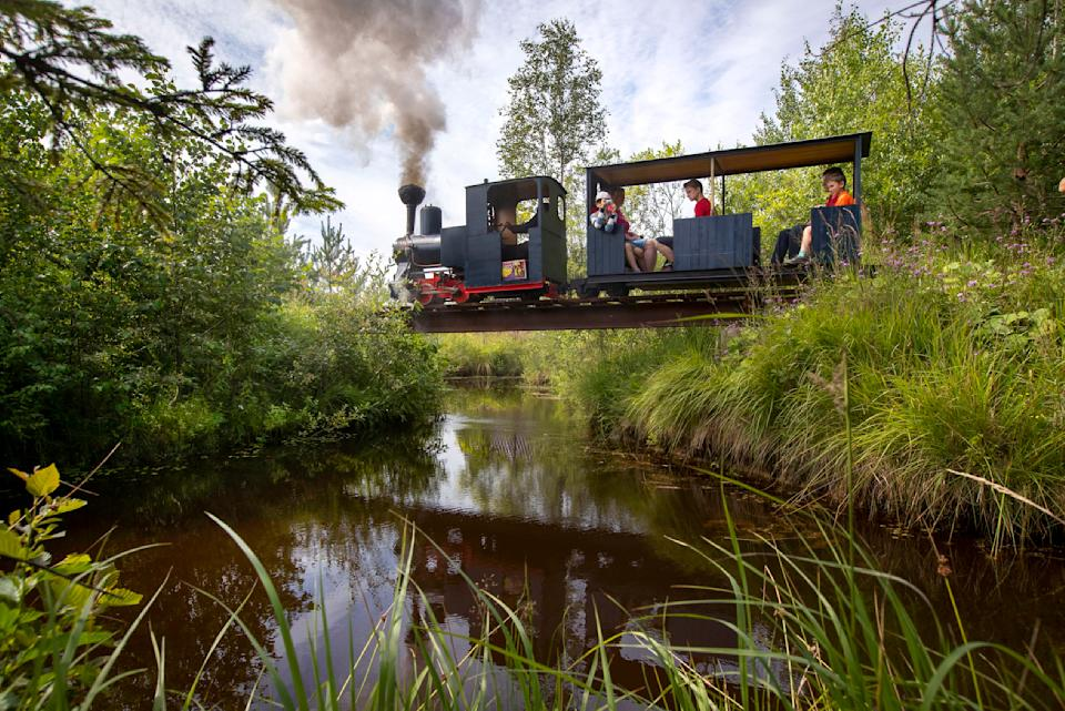 A miniature steam train runs across a bridge on Pavel Chilin's personal railway in Ulyanovka village outside St. Petersburg, Russia Sunday, July 19, 2020. It took Chilin more than 10 years to build a 350-meter-long mini-railway twisting through the grounds of his cottage home about 50 kilometers (some 30 miles) outside St. Petersburg, complete with various branches, dead ends, circuit loops, and even three bridges.(AP Photo/Dmitri Lovetsky)