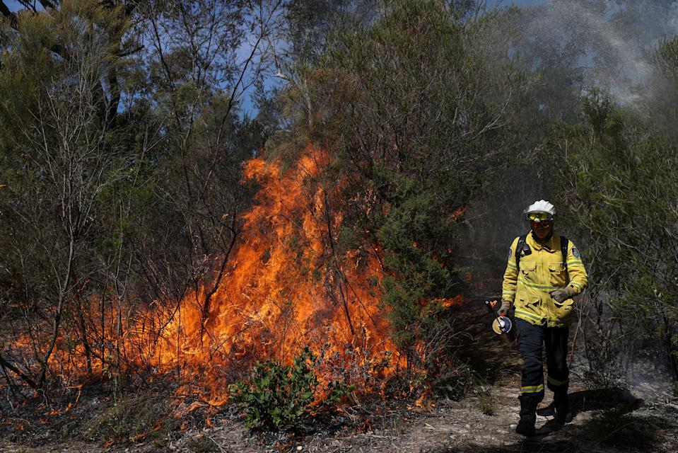 A firefighter stands in front of a controlled burn in the Arcadia suburb of Sydney, Australia.
