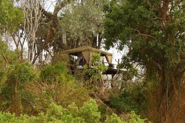 best treehouse hotels, africa treehouses, treehouse hotels in africa
