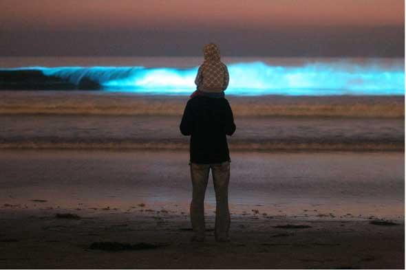 The waves light up in California