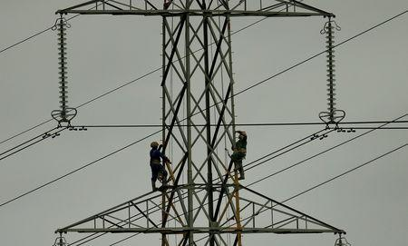 FILE PHOTO: Workers paint an electricity pylon near Lymm, northern England February 18, 2015.REUTERS/Phil Noble/File Photo