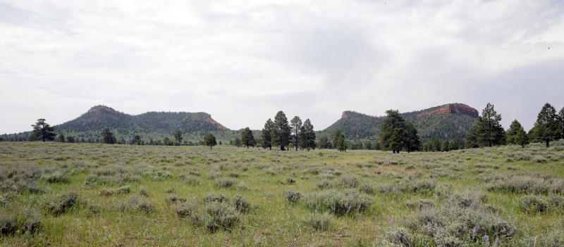 """FILE - In this June 22, 2016 file photo, the """"Bears Ears"""" buttes are shown near Blanding, Utah. President Donald Trump signed an executive order Wednesday, April 26, 2017, directing his interior secretary to review the designation of dozens of national monuments on federal lands, as he singled out """"a massive federal land grab"""" by the Obama administration. (AP Photo/Rick Bowmer, File)"""
