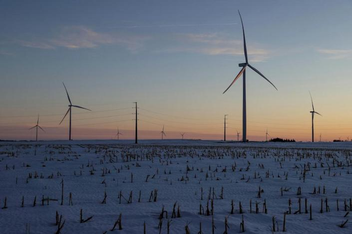 A wind farm shares space with corn fields the day before the Iowa caucuses, where agriculture and clean energy are key issues, in Latimer, Iowa.