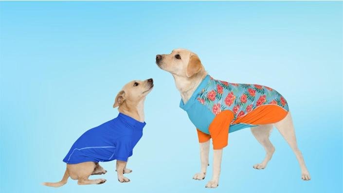 Pet owners can opt for UPF gear instead of dog-friendly sunscreen.