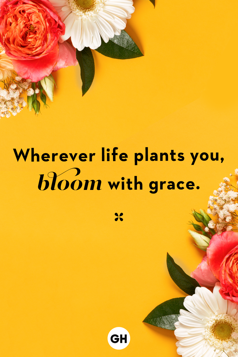 <p>Wherever life plants you, bloom with grace.</p>