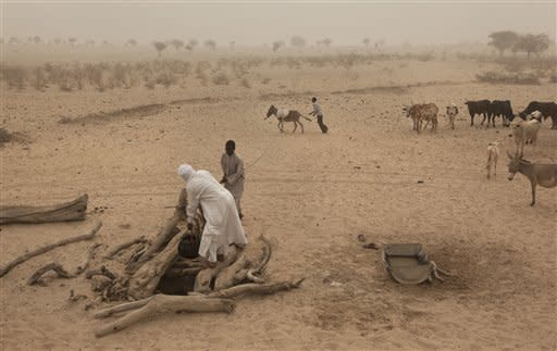 Chadian men and boys use a donkey to pull up water, of a quality only suitable for animals to drink, from a well which took twenty men a week to dig by hand, in a wadi near Tchyllah, a desert village in the Sahel belt of Chad, Thursday, April 19, 2012. UNICEF estimates that 127,000 children under 5 in Chad's Sahel belt will require lifesaving treatment for severe acute malnutrition this year, with an estimated 1 million expected throughout the wider Sahel region of West and Central Africa in the countries of Niger, Nigeria, Mali, Chad, Burkina Faso, Cameroon, Senegal and Mauritania. The organization says the current food and nutrition crisis stems from scarce rainfalls in 2011, which caused poor harvests and livestock production, though the situation in Chad has also been exacerbated by an influx of Chadians returning from Libya as a result of the conflict there. (AP Photo/Ben Curtis)