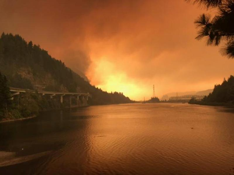 The Eagle Creek fire seen burning along the Columbia River in Oregon on Sept. 5, 2017. (Handout . / Reuters)