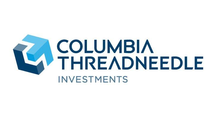Best Dividend Funds: Columbia Dividend Income Fund (A Shares, LBSAX)