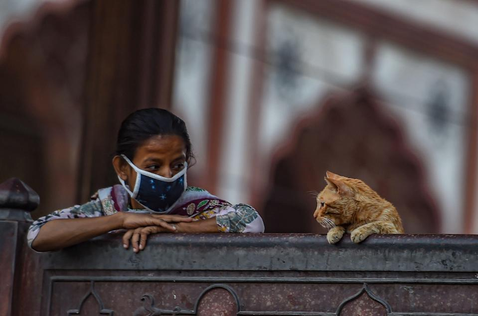 New Delhi: A woman and a cat at Jama Masjid in Delhi on the eve of the beginning of Ramzan on Tuesday, 13 April.