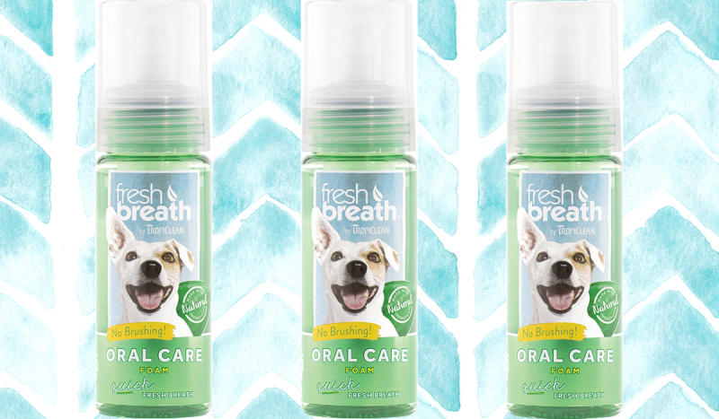 Your dog's breath is about to be fresher than yours. (Photo: Chewy)