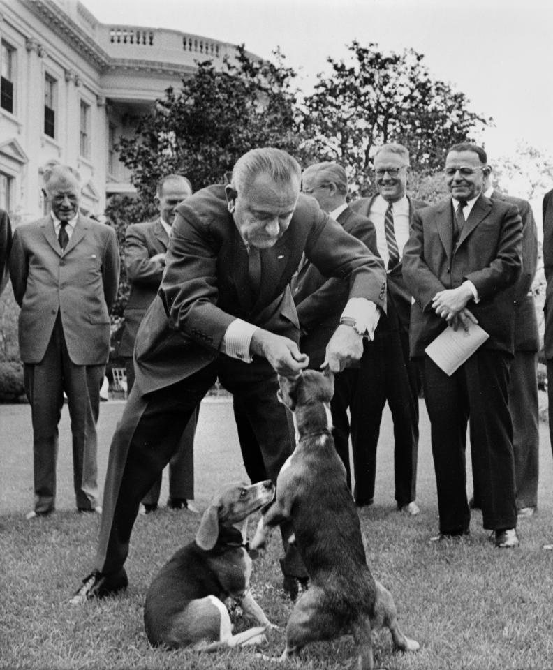 "U.S. President Lyndon B. Johnson holds his dog ""Her"" by the ears as White House visitors look on, April 27, 1964, on the White House lawn, Washington, D.C. At left is President Johnson's other dog, ""Him.""  This picture raised criticism from dog lovers. (AP Photo/Charles P. Gorry)"