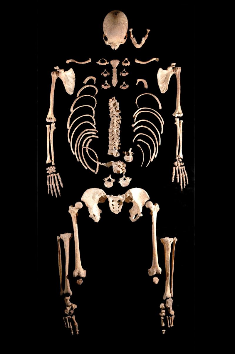 LaBrana1_skeleton