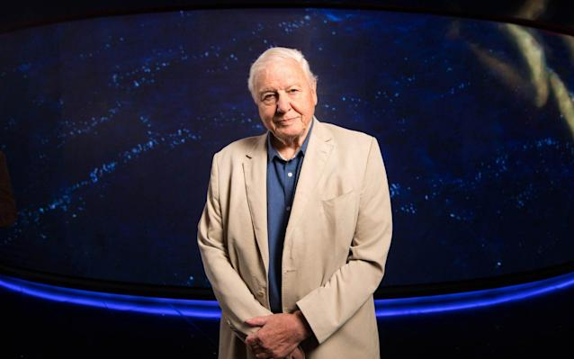 Sir David Attenborough at the Seven Worlds, One Planet premiere - PA