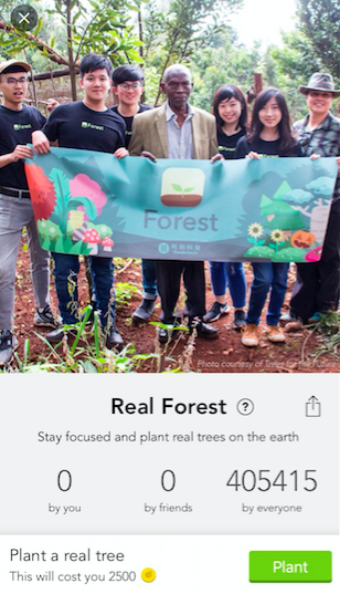 """Forest's """"Real Forest"""" menu"""