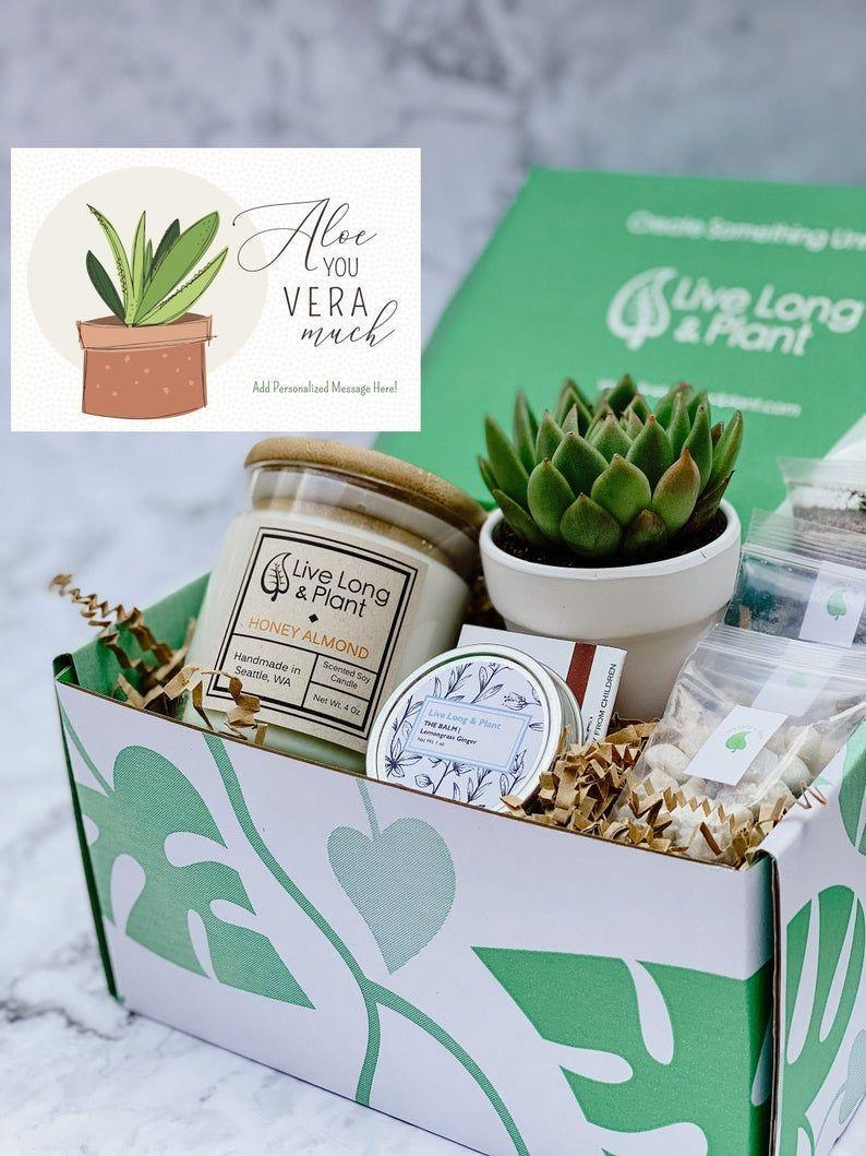 """<p><strong>LiveLongandPlant</strong></p><p>etsy.com</p><p><strong>$22.99</strong></p><p><a href=""""https://go.redirectingat.com?id=74968X1596630&url=https%3A%2F%2Fwww.etsy.com%2Flisting%2F890342731%2Fsucculent-gift-box-gift-box-diy&sref=https%3A%2F%2Fwww.womansday.com%2Frelationships%2Ffamily-friends%2Fg35756207%2Fmothers-day-gift-baskets%2F"""" rel=""""nofollow noopener"""" target=""""_blank"""" data-ylk=""""slk:SHOP NOW"""" class=""""link rapid-noclick-resp"""">SHOP NOW</a></p><p>If the task of growing her own vegetables seems a little too daunting, then get your mom this plant lovers' box, complete with a handmade soy candle and everything your mom needs to create her own succulent terrarium. </p>"""