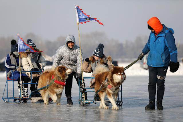 <p>Chinese men pull tourists on dog sleds on the frozen Songhua River in Harbin in China's Heilongjiang province on Jan. 4. (Photo: Wu Hong/EPA-EFE/REX/Shutterstock) </p>