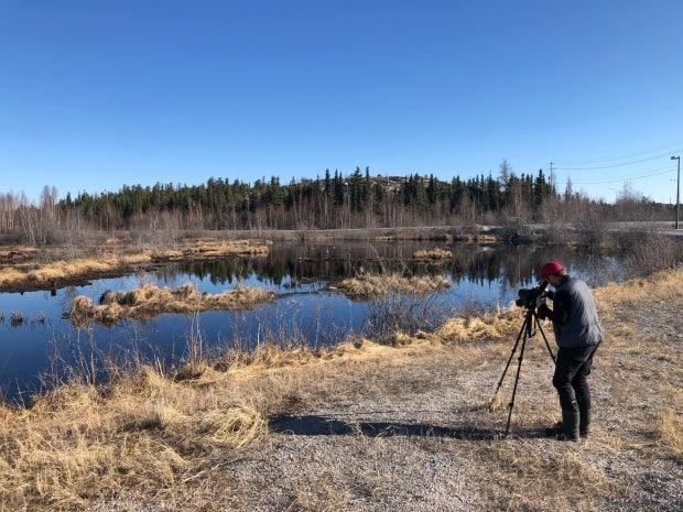 Hildebrant says seeing species return to the North in the spring is like 'old friends coming back.'