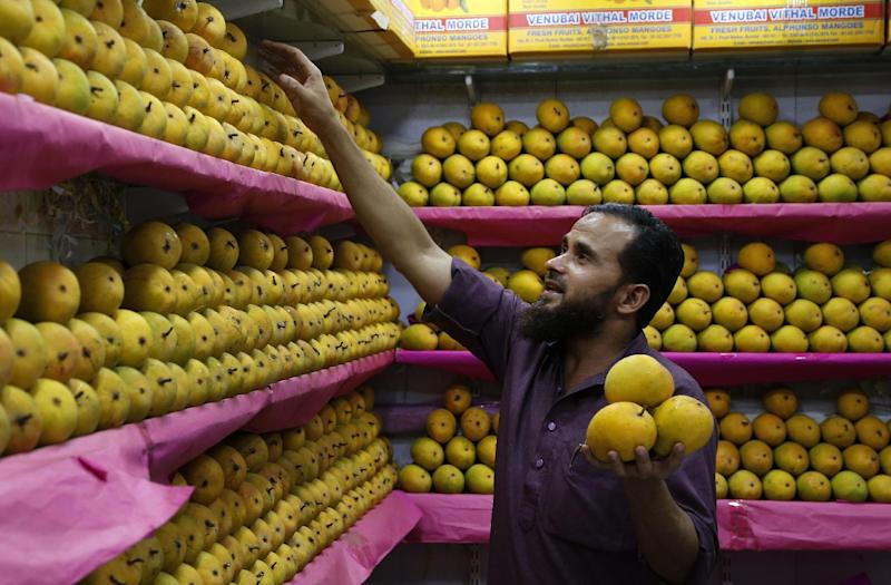 In this Tuesday, May 6, 2014 photo, an Indian vendor displays Alphonso mangoes at a whole sale market in Mumbai, India. Starting May 1, the EU banned imports of Indian mangoes including the Alphonso, considered the king of all the mango varieties available in South Asia. The ban was implemented because a large number of shipments were contaminated with fruit flies. (AP Photo/Rajanish Kakade)