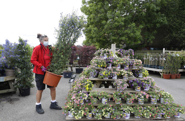 A gardener works at Osterley Garden Centre in London as the country is in lockdown to help stop the spread of coronavirus, Wednesday, May 13, 2020. Some of the coronavirus lockdown measures are being relaxed in England on Wednesday, with garden centres reopening but with extra measures such as social distancing. (AP Photo/Kirsty Wigglesworth)