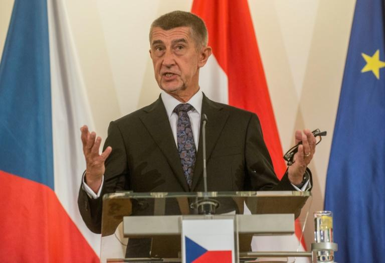 Prime Minister Andrej Babis is suspected of abusing special EU small business subsidies to create his luxury Stork Nest resort and farm (AFP Photo/Michal CIZEK)