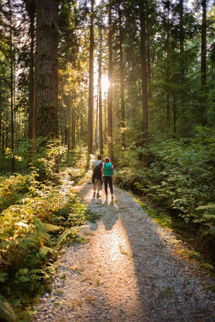 """<p>Spending time in nature is a great way to bond while enjoying the gorgeous summer weather. Bring along a guidebook so you can point out plants and animals together and pack plenty of <a href=""""https://www.thepioneerwoman.com/food-cooking/meals-menus/g32257082/trail-mix-recipes/"""" rel=""""nofollow noopener"""" target=""""_blank"""" data-ylk=""""slk:trail mix"""" class=""""link rapid-noclick-resp"""">trail mix</a> too.</p><p><a class=""""link rapid-noclick-resp"""" href=""""https://go.redirectingat.com?id=74968X1596630&url=https%3A%2F%2Fwww.walmart.com%2Fip%2FNorthside-Rampart-Mid-Leather-Hiking-Boot-Little-Kid-Big-Kid%2F260122684&sref=https%3A%2F%2Fwww.thepioneerwoman.com%2Fholidays-celebrations%2Fg36333267%2Ffathers-day-activities%2F"""" rel=""""nofollow noopener"""" target=""""_blank"""" data-ylk=""""slk:SHOP HIKING BOOTS"""">SHOP HIKING BOOTS</a></p>"""
