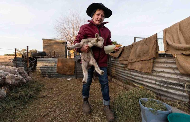NSW farmer Coral Jerry, 80, has worked on the family farm for decades.
