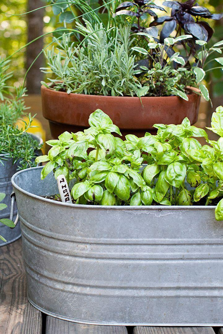 <p>The perfect blend of style and function, galvanized steel buckets can make for brilliant raised garden beds. Add plant labels for an extra dose of charm.</p>