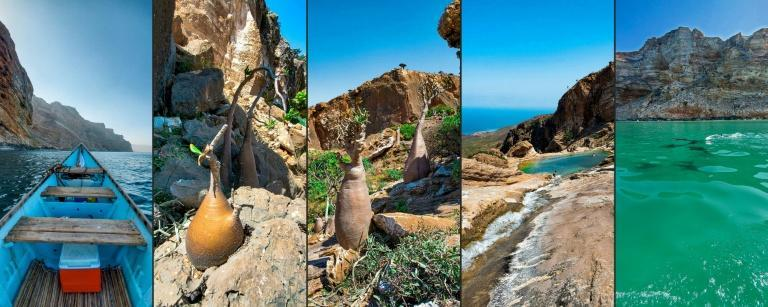 Yemen's island of Socotra is a site of global importance for biodiversity conservation
