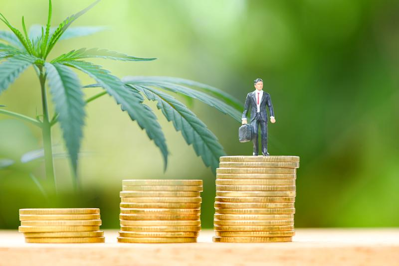 Three stacks of coins with a tiny businessman on top of one and a cannabis plant in the background