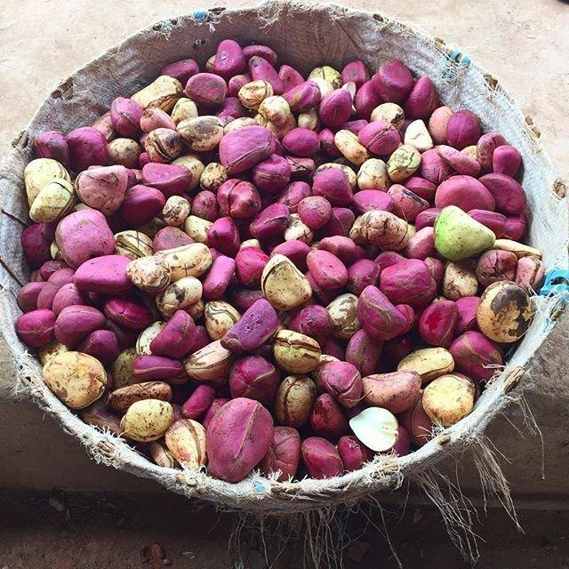 A basket full of kola nuts that have been peeled from their pod. (instagram: thegreatful)
