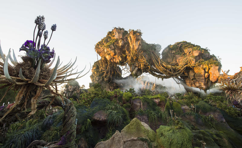 """This photo provided by Disney shows a new land opening at Walt Disney World's Animal Kingdom in Lake Buena Vista, Fla., on May 27, 2017, called """"Pandora - The World of Avatar."""" The land was inspired by the lush world of Pandora depicted in the movie """"Avatar."""" (Kent Phillips/Disney via AP)"""