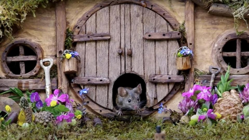 A mouse exits the door of a mini replica Hobbit house from The Lord of the Rings