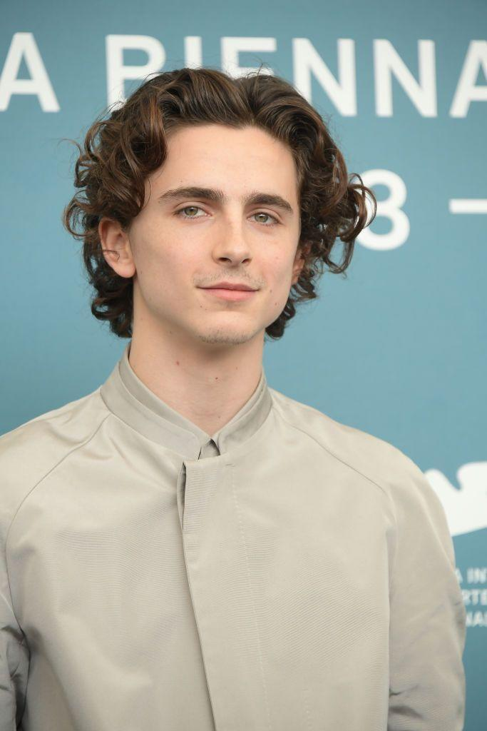 <p>His work in <em>Lady Bird </em>and <em>Call Me By Your Name</em> made him one of the industry's hottest young actors last year—and his long curls garnered almost just as much attention. </p>