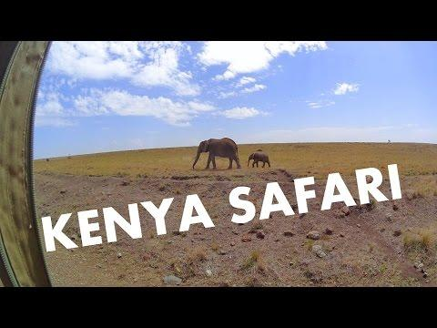 <p>While on vacation at the Angama Luxury Safari Camp in Kenya, Frederick Sherman captured this incredible footage of the wildlife surrounding the camp.</p><p>The California native is no stranger to travel and went to Kenya to see these animals firsthand. Every morning Frederick's guide Alice drove him around the safari in the resort's Land Cruiser.</p> <p>This video was shot on the first day Alice took Frederick out on the reserve. As they set out on their adventure they were greeted by a group of impalas and got into a traffic jam with a few zebras. Throughout the day, Frederick was treated to more treasures in the national reserve. Credit: Luxury Fred via Storyful</p>