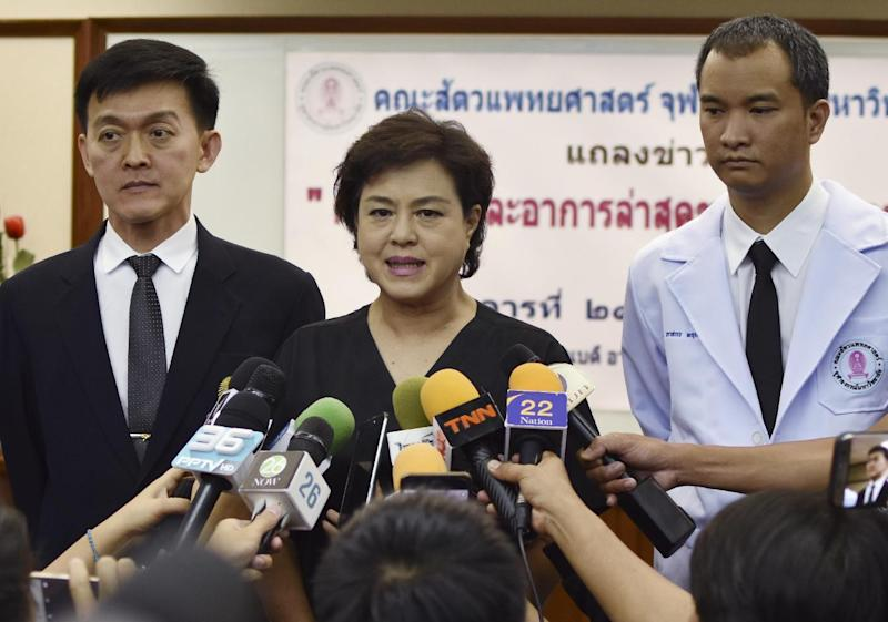 Dr. Nantarika Chansue, center, who removed 5 kilograms (11 pounds) of coins from a sea turtle's stomach in an hours-long operation, speaks to reporters in Bangkok, Tuesday, March 21, 2017. The 25-year-old sea turtle in Thailand who swallowed nearly a thousand coins tossed by tourists seeking good luck died Tuesday, two weeks after having surgery to remove the coins from its stomach. (AP Photo/Kaweewit Kaewjinda)
