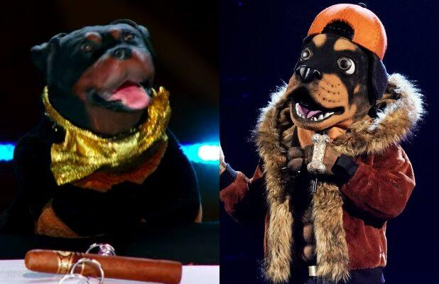 'Masked Singer': Triumph the Insult Comic Dog Claims The Rottweiler Is His Illegitimate Son (Exclusive Video)