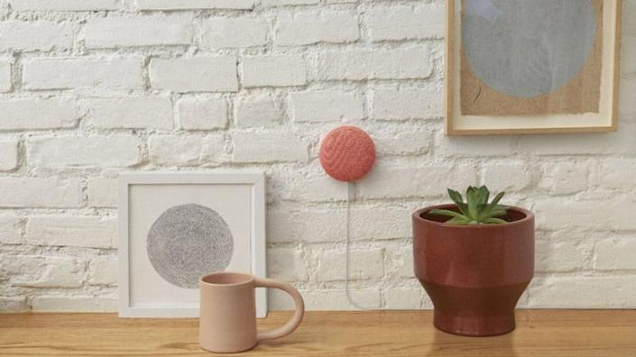 This small speaker can answer your most random questions.