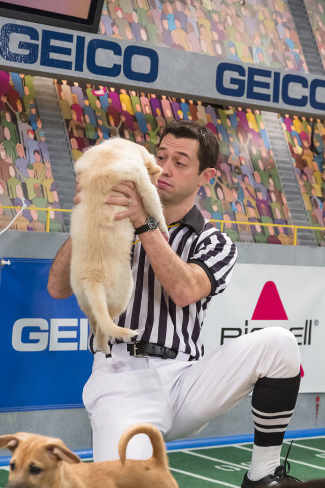 Referee makes a call on the field during Puppy Bowl IX.