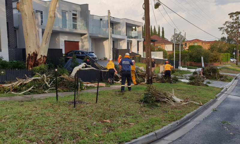 NSW emergency crews at the scene of fallen branches following destructive winds.