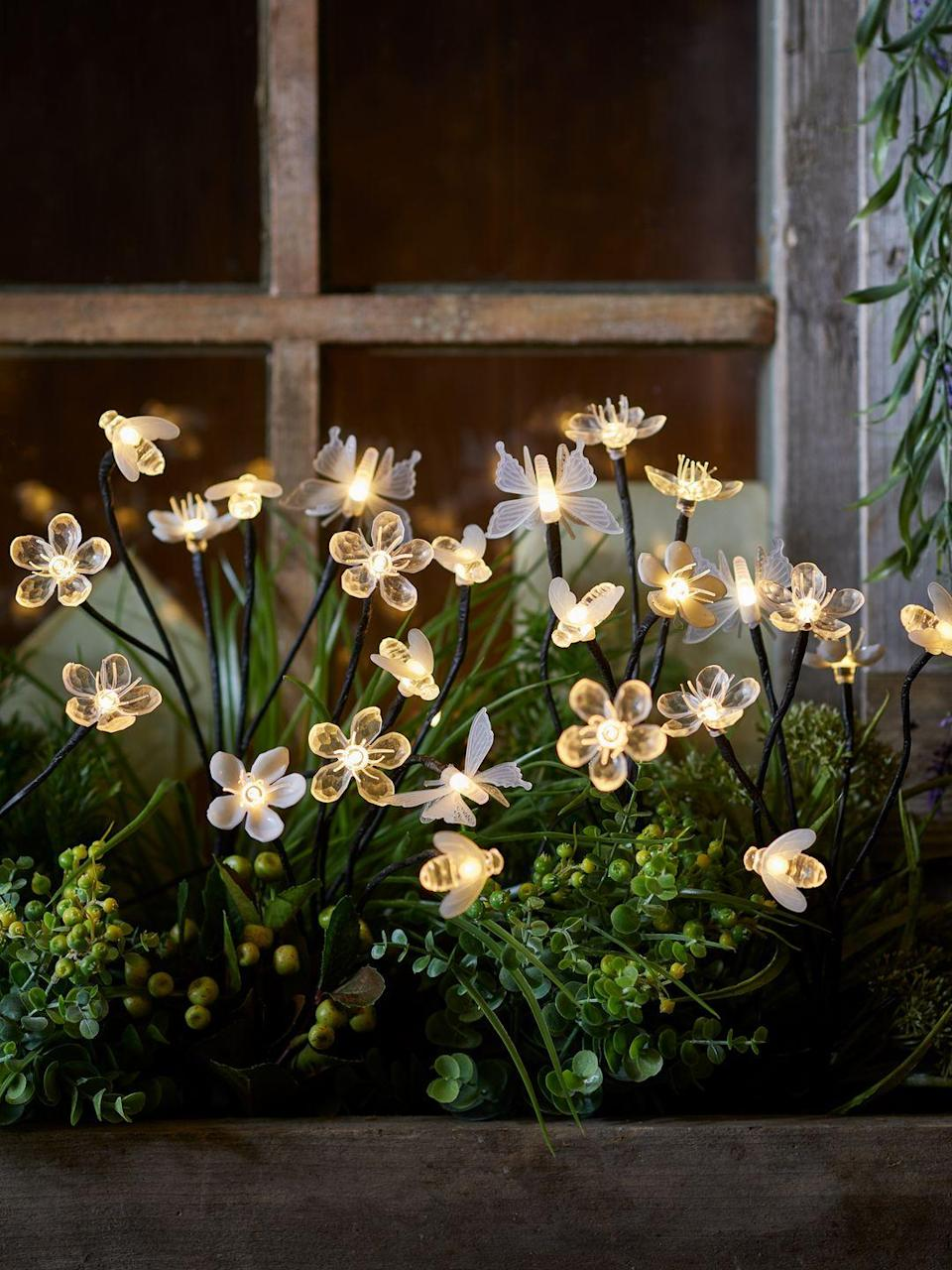 """<p>Buy stake lights to scatter amongst shrubs, place on your lawn, or stick into <a href=""""https://www.housebeautiful.com/uk/garden/a30878177/window-boxes/"""" rel=""""nofollow noopener"""" target=""""_blank"""" data-ylk=""""slk:window boxes"""" class=""""link rapid-noclick-resp"""">window boxes</a> for instant wow factor. These are pretty inexpensive and they add a wonderful decorative touch to your garden, however small it is. </p><p>With solar lights, just place it within a sunny spot in your garden to enable a full day's charge. As evening falls, the lights will automatically shine bright.</p><p><strong>Pictured: </strong>Flower, Bee & Butterfly Solar Stake Lights, <a href=""""https://go.redirectingat.com?id=127X1599956&url=https%3A%2F%2Fwww.lights4fun.co.uk%2Fproducts%2Fflower-bee-butterfly-solar-stake-lights&sref=https%3A%2F%2Fwww.housebeautiful.com%2Fuk%2Fgarden%2Fdesigns%2Fg28%2Fgarden-ideas-on-a-budget%2F"""" rel=""""nofollow noopener"""" target=""""_blank"""" data-ylk=""""slk:Lights4Fun"""" class=""""link rapid-noclick-resp"""">Lights4Fun</a> </p>"""