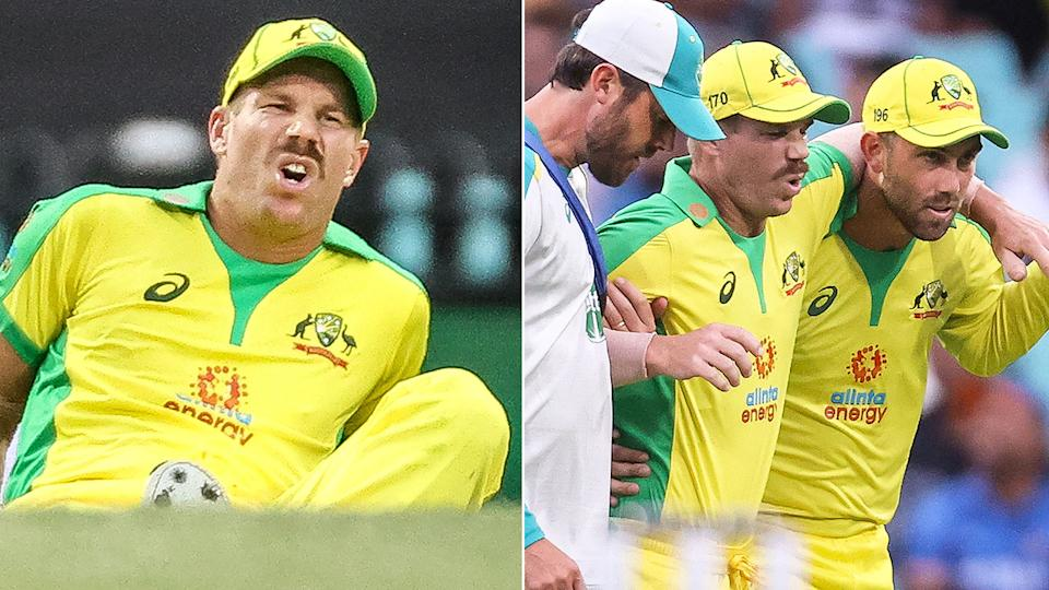 David Warner can be seen in visible pain after injuring his groin against India.