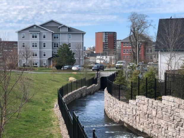 Part of the Sawmill River project with 162 Ochterloney St. in the background. (Pam Berman/CBC - image credit)