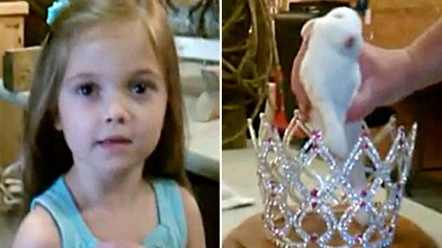 'Toddlers & Tiaras' pet bunny back from the dead (sort of)