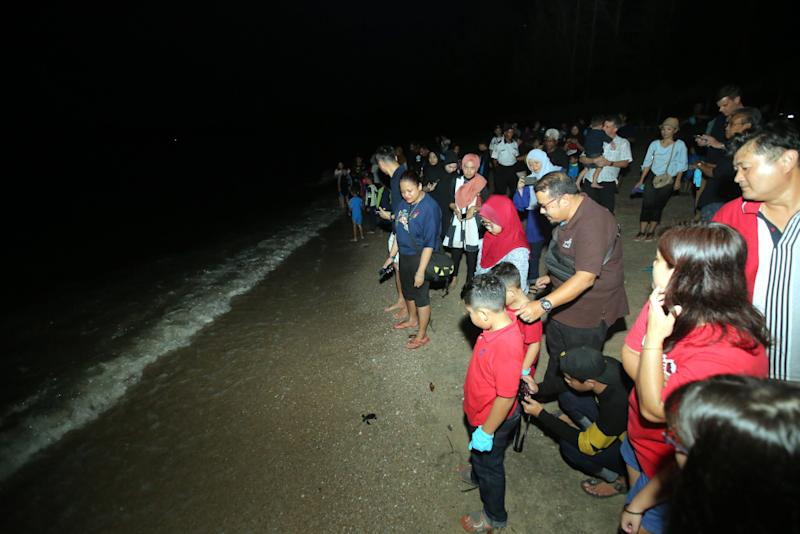 Guests of Swiss-Garden Beach Resort Damai Laut watch the turtle hatchlings make their journey to the sea. — Picture by Farhan Najib