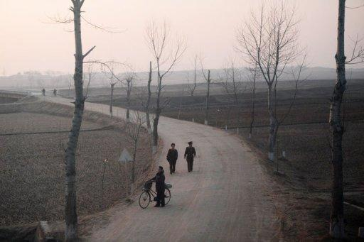 Much of last year's harvest in North Korea was diverted to military stores or for citizens of Pyongyang, a report says