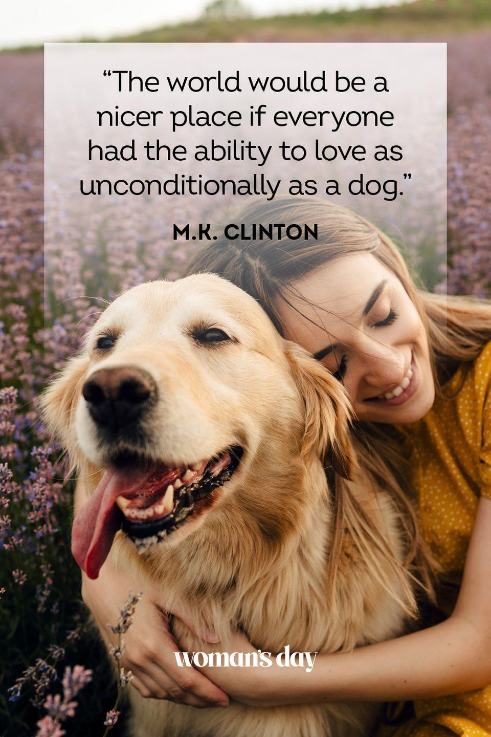 """<p>""""The world would be a nicer place if everyone had the ability to love as unconditionally as a dog."""" </p>"""