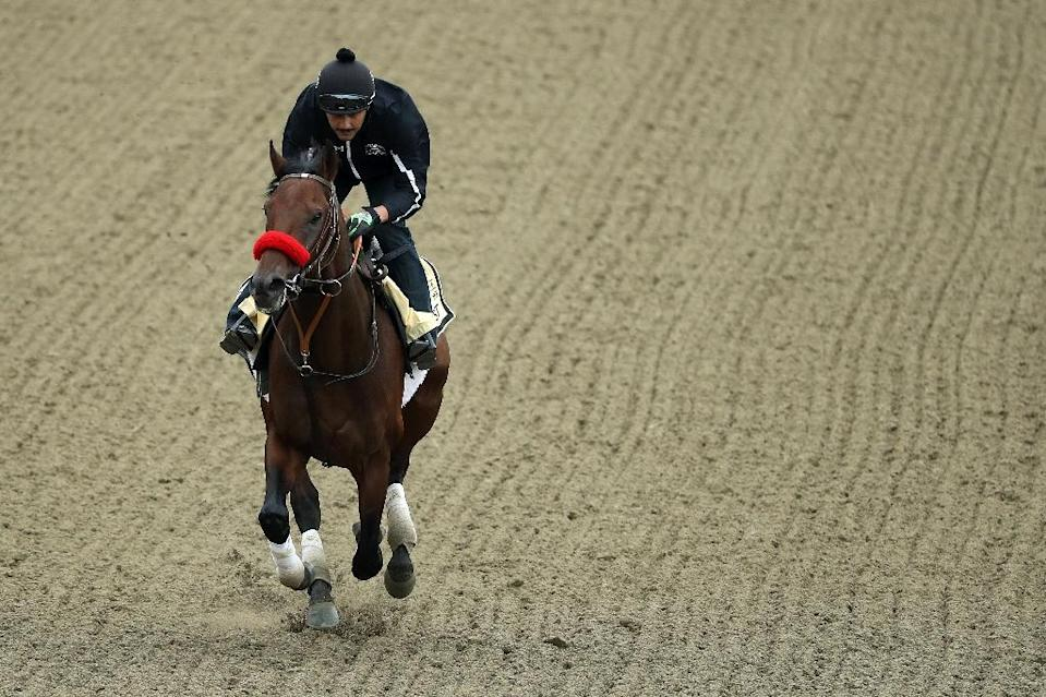 Kentucky Derby winner Nyquist will reportedly skip next month's Belmont Stakes in the wake of his upset defeat at the Preakness (AFP Photo/Patrick Smith)