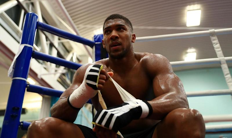 Different ball game: Joshua says Takam will pose a different threat to Klitschko (Tim Goode/PA)